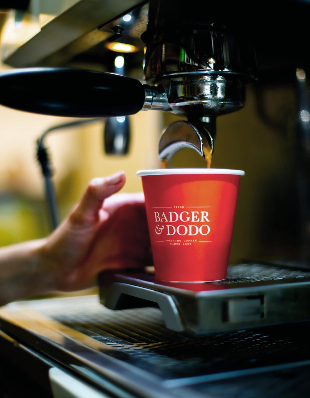 Badger & Dodo Brand Development