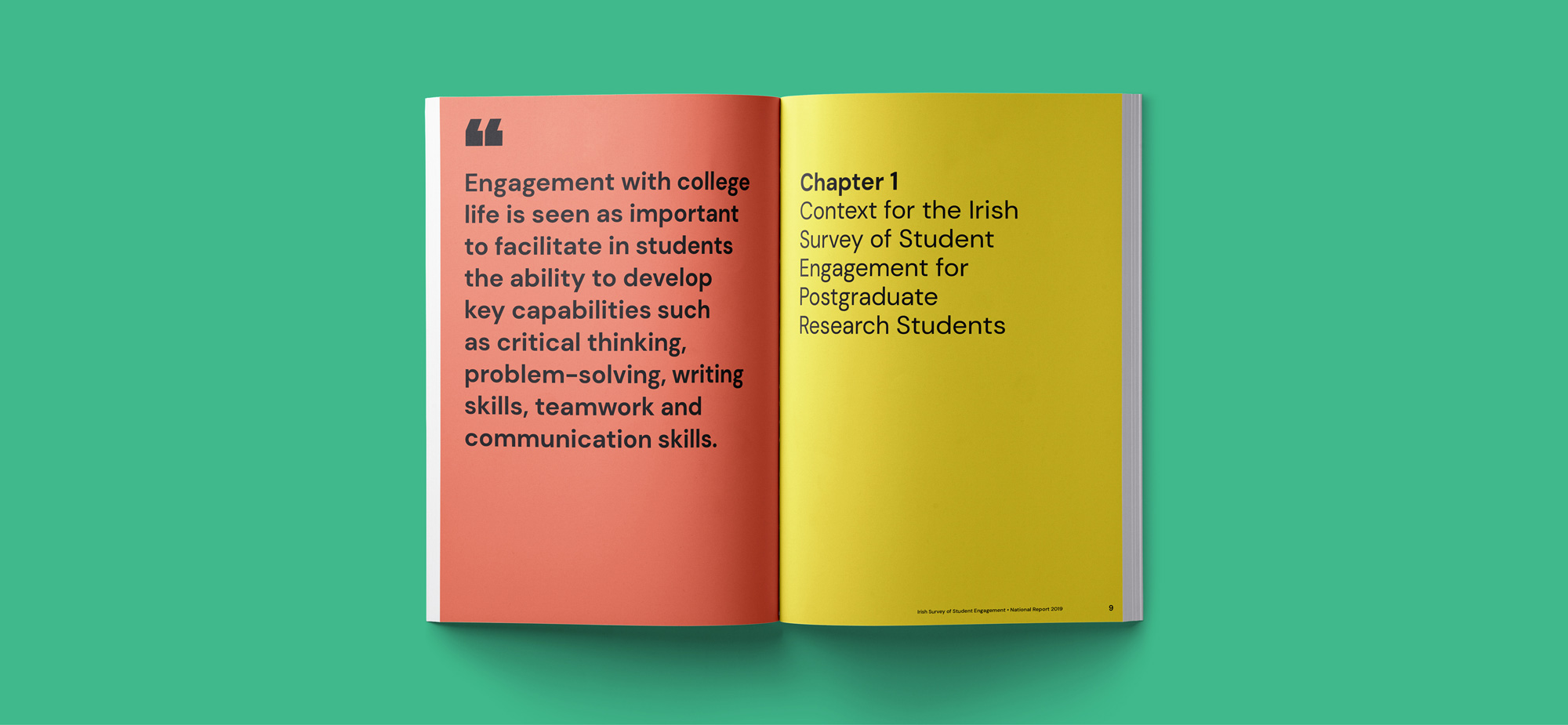 student survey report design