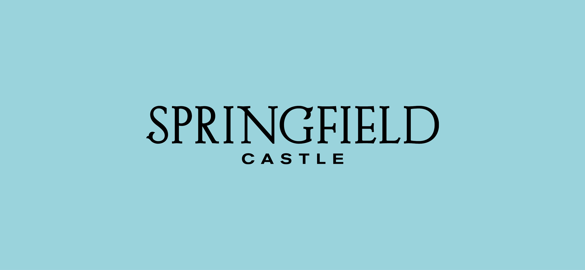 Springfield Castle Brand Development