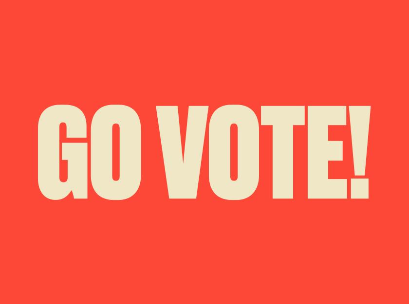GO VOTE - Political Participation Campaign - Immigrant Council of Ireland - Video Production, Design and Campaign Development